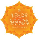Solar Seed Transylvania - 2017.08.11 - Main Stage - Stuy /Piece/