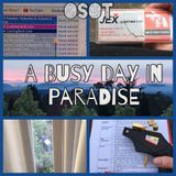 OSOT - A Busy Day in Paradise