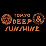 DJ SHINKAWA 2014.11.1 DEEP & SUNSHINE TOKYO #5 @ R LOUNGE