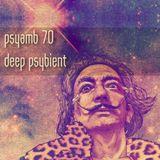 Deep Psychedelic Ambient - PsyAmb 70