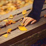 Nghe mùa thu tới