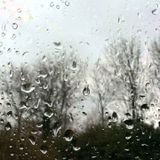 Rainy Saturday Afternoon