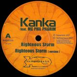This is Ruff & Tuff: Kanka & Vibronics Steppas mix