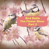 Bird Radio - The Flower Show Part 2