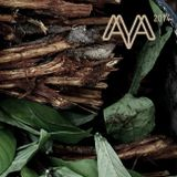 World Ayahuasca Conference Ibiza 2014