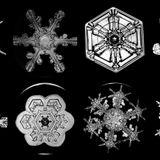 #13 Crystal bits of snowflakes...