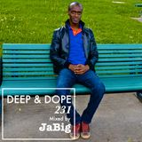 Smooth Deep Jazz, Soulful & South Africa House Mix by JaBig - DEEP & DOPE 231