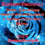 Bluetown Electronica show 14.02.16
