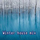 Winter house mix
