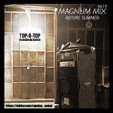MAGNUM MIX VOL.14 -BEFORE SUMMER-
