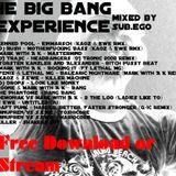 the big bang experience