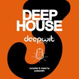 Deep House Label Showcase: DeepWit Recordings #3
