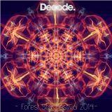 Dj Decode - Forest Star Festival 2014