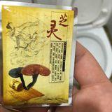 China mix - Lạc Đà Sa Mạc