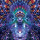 Arayan @ Shiva Space Technology IX X-Dream night (extended) , Wydział Remontowy