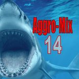 Aggro-Mix 14: Industrial, Power Noise, Dark Electro, Harsh EBM, Rhythmic Noise, Cyber