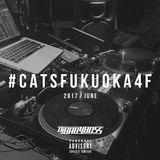 #catsfukuoka4f (June / 2017)