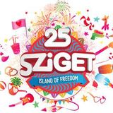 Chief Editor's about Sziget Festival 2017
