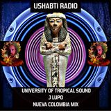 Phabius presents Ushabti Radio #4 with UNIVERSITY OF TROPICAL SOUND @Paranoise Radio
