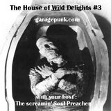 The House of Wild Delights episode 3
