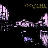 "voicy noises or: ""how can i get lost in time with music"" by [micro:form]"