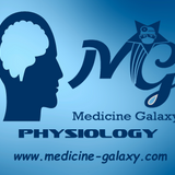 C.N.S-Part4-Physiology-Dr.Ahmed Mostafa