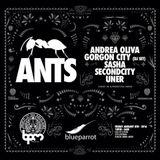 Sasha - Live At ANTS, Blue Parrot (BPM Festival 2016, Mexico) - 8th January 2016
