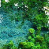 imagined landscape live mix