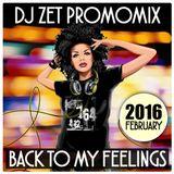 Dj Zet - Back To My Feelings (February 2016 Promomix)