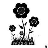 Woodstep Vol.1  (Vinyl Summer Mix Session)