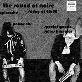 """Flippinradio """"The Sound Of Noise"""" 15/03/13 Panos Chr With Guest:Spiros Limnaios"""