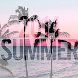 Weekend Night Podcast #60 Deejay Lil`Boy Summer Session Vol.2 (2014.06.07)