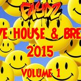 Rave House & Breaks 2015 (Volume 1)