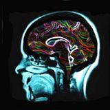 PSYCADELIC TRANCE (GOA)
