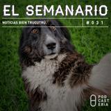 Semanario No. 31 - Noticias Bien Trucutrú: Emilio Chuayffet, Kelly Osbourne, EPN, Yorsh de Polanco.