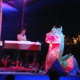 Plurgrim@Ambient_Paradise_Boom_Festival_2010_Episode_2