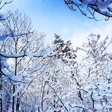 Archaic Smile -winter sun-
