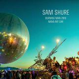 Sam Shure - Burning Man 2018 / Maxa Art Car