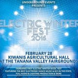 Electric Winter Fest 2015 Mix