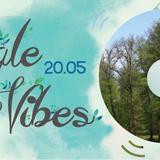 Slim Rocka @ Jungle Vibes II (Special DnB Birthday Set)