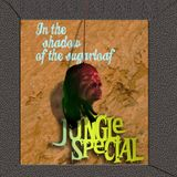 In The Shadow Of The Sugarloaf Jungle Special
