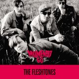 MOMENTO 60 - SPECIAL THE FLESHTONES for Radio Momento 60