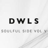 DWLS - Soulful Side V