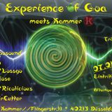 Sym&Biose @ Expierence of GoA WELCOME Kammer 7.1.2017