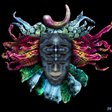 Shpongle Remixes - PsyAmb 54