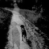 Mixtape 4 - Black Dog. From John Norsworthy