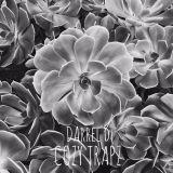 Darrel D - Cozy Trapz Vol. 1