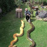 Granny & The Snake