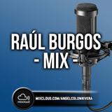 Raúl Burgos Mix