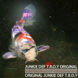 JUNKIE DEF T.O.R.Y mix on sunday 2014-11-23